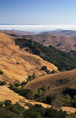 Coastal Foothills leading to the Pacific Ocean