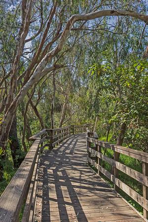 Natural Bridges State Park  Walkway